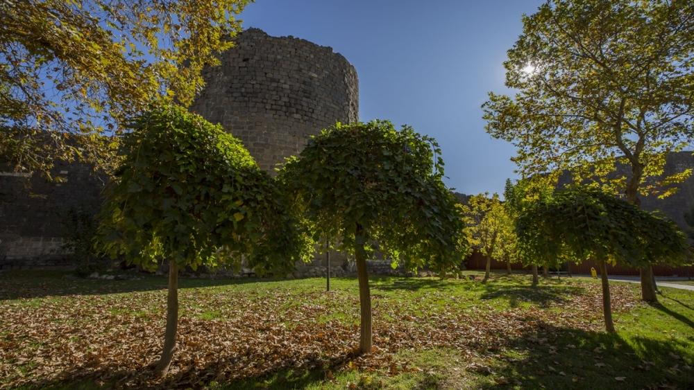 Diyarbakır'da sonbahar güzelliği 1