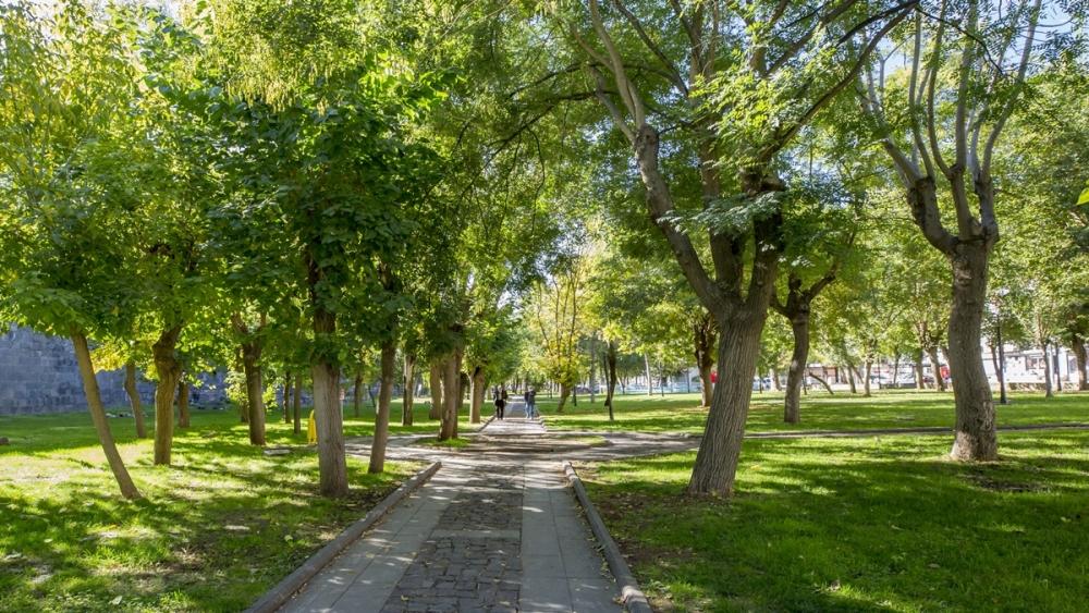 Diyarbakır'da sonbahar güzelliği 2