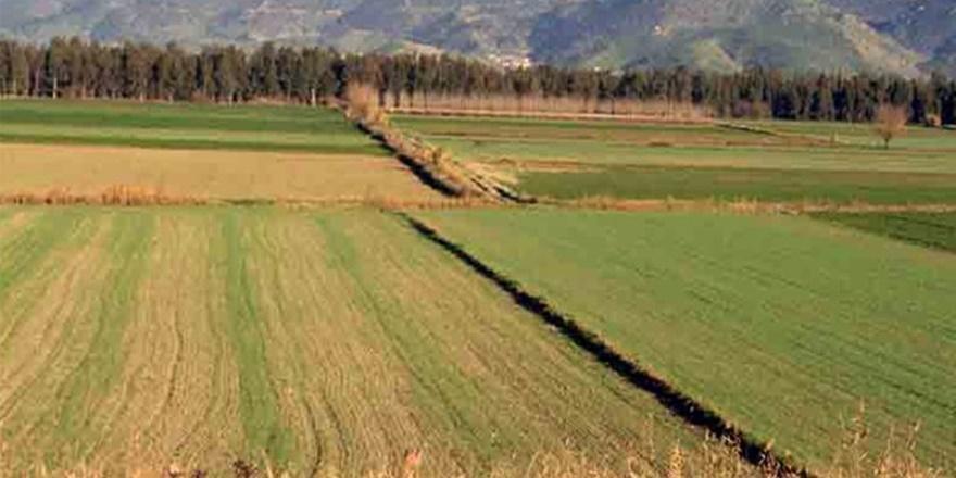 Ovacık'taki hazine arazileri sermayeye peşkeş çekiliyor