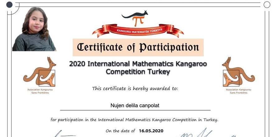Uluslararası Matematik Yarışması 1'incisi Diyarbakır'dan