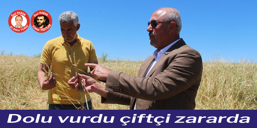 VİDEO - Dolu vurdu çiftçi zararda