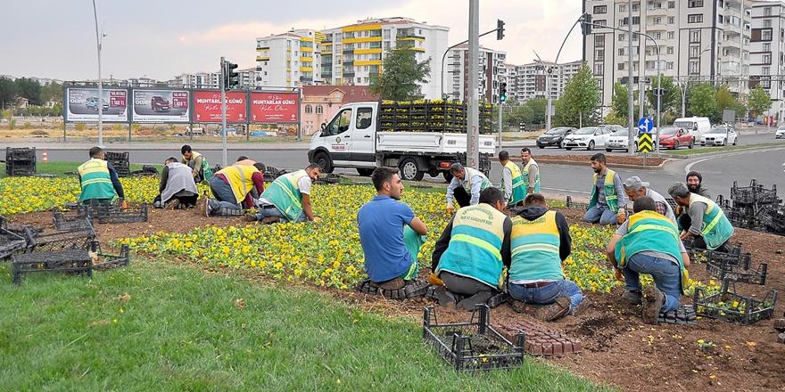Büyükşehir 2 milyon mevsimlik çiçek üretti