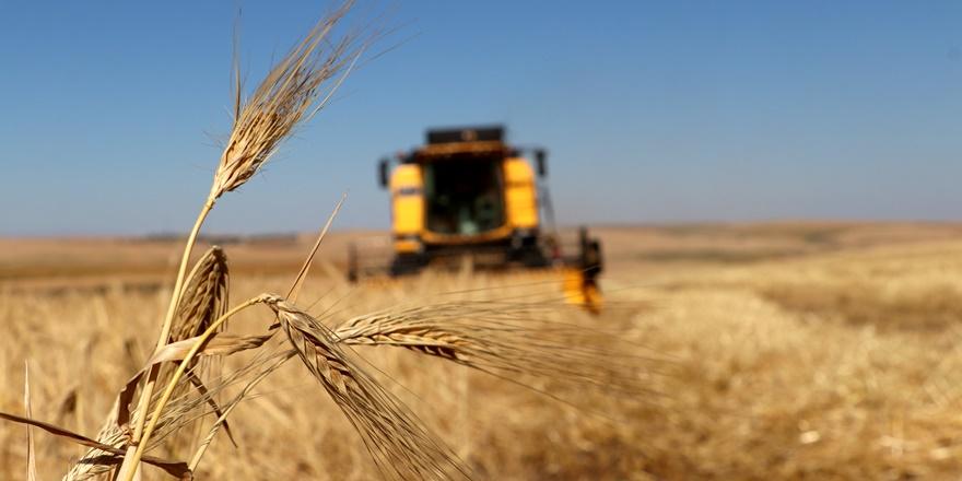 Çiftçi-Sen Genel Başkanı Ali Bülent Erdem: Türkiye'de gıda tehdidi olacak