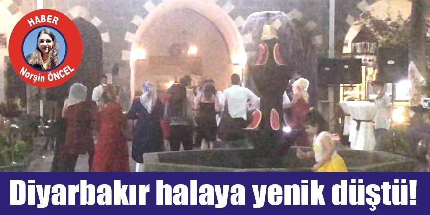 VİDEO - Diyarbakır halaya yenik düştü!