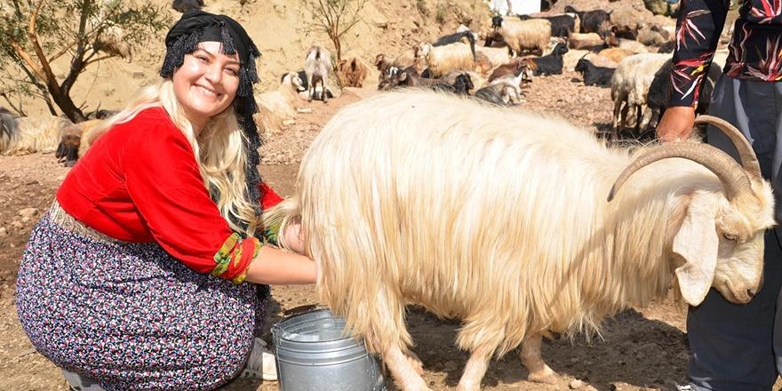 Yüksekova'da 'mutlu' bir köy öğretmeni: Alime Taşcı