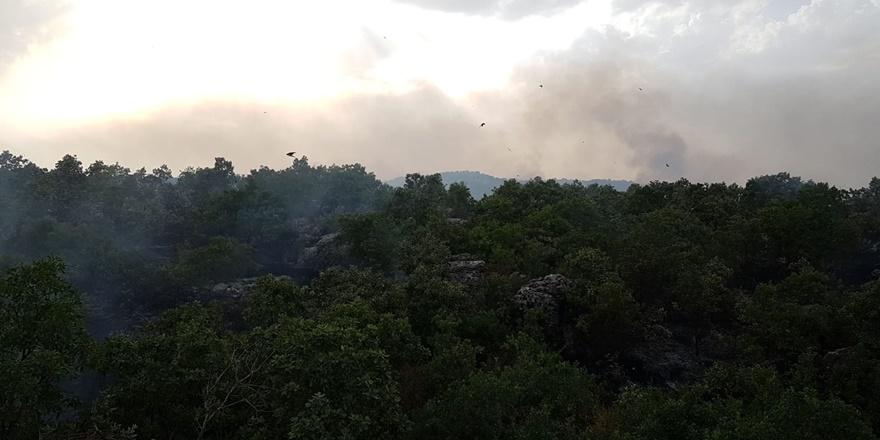 Diyarbakır'da örtü yangını