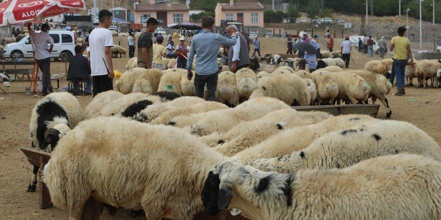 Diyarbakır'da bayramın 3'üncü gününde kurbanlık fiyatları düştü