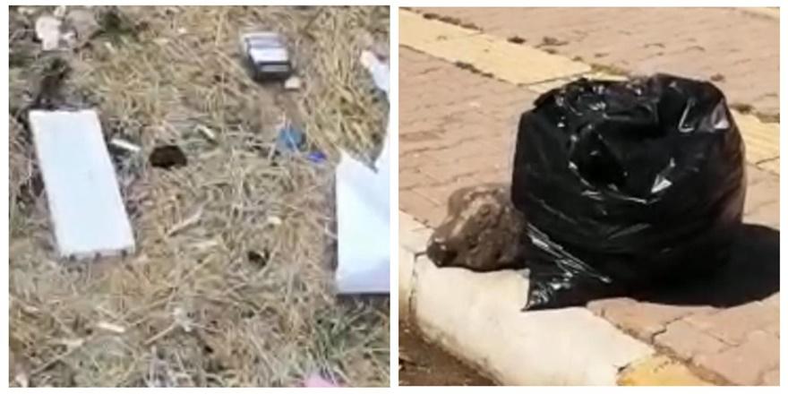 VİDEO - Kayapınar çöplükten geçilmiyor!