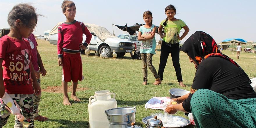 VİDEO - Onların yaşamı çadırlarda tükeniyor