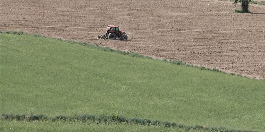 Hazineye ait tarım arazileri, çiftçilere kiralanacak