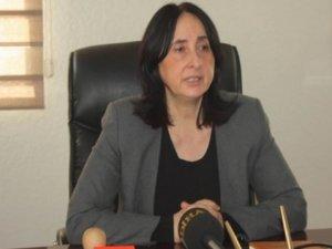 BDP'den 'Amed' için kanun teklifi