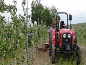 Bitlis'te meyvecilik sektörü büyüyor