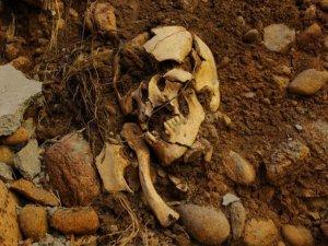Temel kazısında insan kemiklerine rastlandı