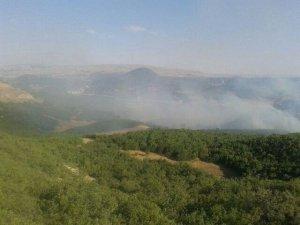 Bingöl'de orman yangını!