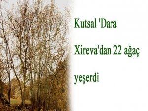 Kutsal 'Dara Xireva'dan 22 ağaç yeşerdi