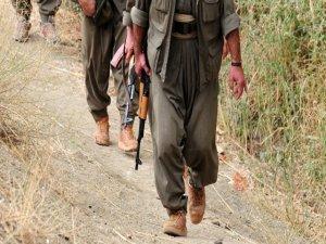 Lice'de 4 askerin kaçırılması
