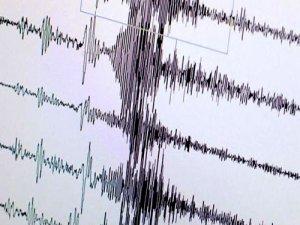 Van'da 4 şiddetinde deprem meydana geldi
