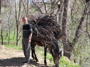 Köylerde doğal yaşam!