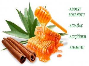 Hangi bitki, hangi hastalığa iyi gelir?