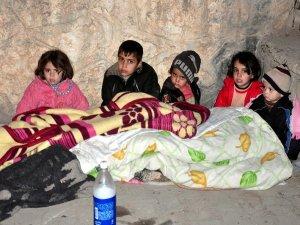 Türkiye'ye sığınan Suriyeliler kampa yerleştirildi