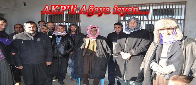AKP'li Ağaya isyan…