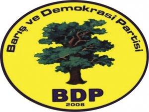BDP: 2014 yılı mücadele yılı olacaktır