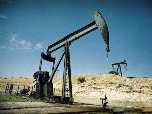 Öz be öz bizim petrolümüz