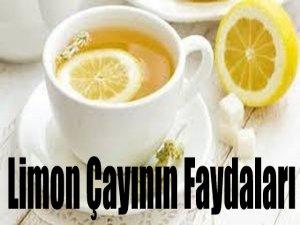 Limon Çayının Faydaları
