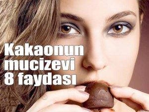 Kakaonun mucizevi 8 faydası