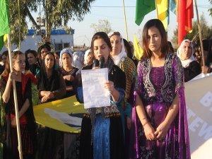 'Di jiyana azad de israr roja yek girtina jinên nevnetewî'