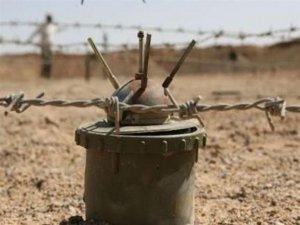 Hêzên Îranê ciwanekî din ê Kurd kuştin