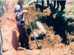 JİTEM merkezinde insan kemikleri bulundu