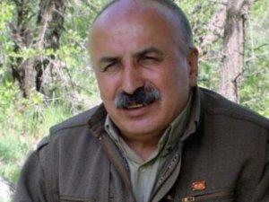 Karasu: Dostê herî mezin yê Ermeniyan, Kurdin