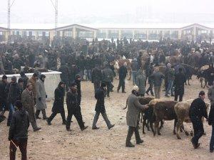 Ağrı'daki hayvan pazarındaki sorunlara tepki