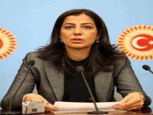 BDP, Paris cinayetleri için araştırma komisyonu kurulmasını istedi