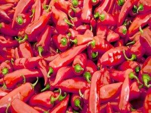 Kış aylarında bu üç yiyecekle kansere dur diyin