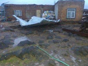 Derik'te hortum faciası: Evler yıkıldı, traktörler devrildi, ağaçlar kökünden söküldü...