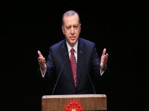 Erdoğan: Risk almadan bu iş yürümez
