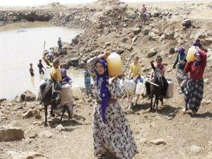 Köylü nüfusu yüzde 61 azaldı