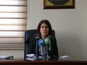 BDP 15 Şubat programını açıkladı