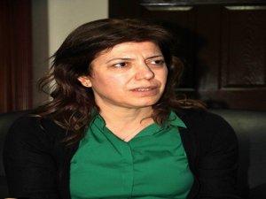 Öcalan'a özgürlük' kampanyası başlıyor