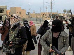 Irak ordusundan Felluce'de operasyon