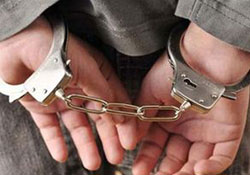 Diyarbakır ve Şırnak'ta 17 gözaltı