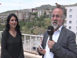 Canlı yayında muhabirin başına kuş kondu