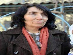 HDP'li vekil Becerikli gözaltına alındı