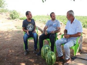 Tarladan tezgâha Diyarbakır karpuzu