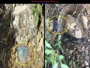 Dicle'de 2 el yapımı patlayıcı düzeneği imha edildi