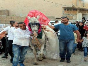At üstünde gelin götürme geleneği yeniden canlandı