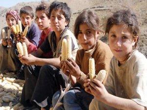 Açlık sınırı açıklandı: Asgari ücreti yine aştı