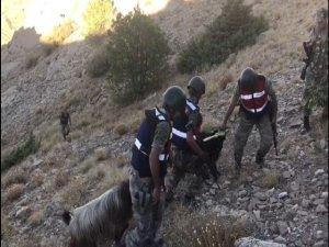 Dağda mahsur kalan keçiler kurtarıldı